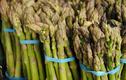 """Thứ """"rau vua"""" ở Việt Nam trồng nhiều """"hốt bạc"""""""