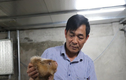 Lắp điều hòa nuôi 'chuột khổng lồ', lãi 500 triệu đồng/năm