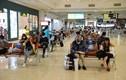 Tăng chuyến dịp 30/4, Vietnam Airlines, Vietjet... bay ngày bao nhiêu chuyến?