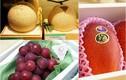 Giật mình 6 loại trái cây giá hàng trăm triệu ai nghe cũng sốc