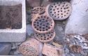 Hết lá bàng khô, xỉ than tổ ong bỗng đắt hàng trên chợ mạng