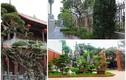 """Đại gia Việt """"chơi lớn"""", xây sân vườn bên trong biệt thự như tiên cảnh"""
