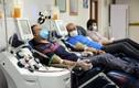 """""""Bùng nổ"""" thị trường chợ đen mua bán huyết tương bệnh nhân COVID-19"""