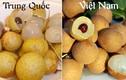 Cách phân biệt các loại quả Trung Quốc bán đầy chợ