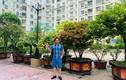 Mãn nhãn vườn cây cảnh trước cửa nhà 7 tỷ của nghệ sĩ Quang Tèo