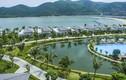 Casino trên đảo ở Khánh Hoà: Việt Nam có bao nhiêu casino?