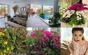 Biệt thự ngập tràn hoa lá của gia đình Hồ Ngọc Hà