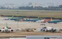 Vé máy bay Tết 2021: Vietnam airlines, Vietjet, Bamboo... hãng nào ngon rẻ?