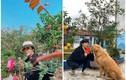 Khu vườn rực rỡ sắc hoa của NSND Minh Hằng