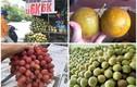 """Sự thật các loại hoa quả """"rẻ như cho"""" bán đầy chợ"""