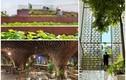 Top công trình Việt giành giải kiến trúc quốc tế 2020