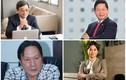 Khối tài sản đồ sộ của các đại gia Việt nhận thù lao 0 đồng