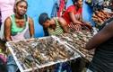 Tiết lộ bất ngờ về khu chợ bán hải sản giá rẻ hơn rau