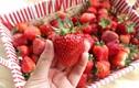 Những thực phẩm giảm béo phù hợp cho từng bộ phận cơ thể