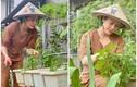 Mỏi mắt ngắm vườn rau xanh mướt giữa đại dịch của Nhật Kim Anh