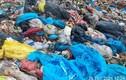 Đà Nẵng phát hiện rác thải phòng chống COVID-19 trộn vào rác sinh hoạt