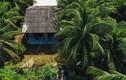 Bất ngờ những căn nhà đơn sơ ở quê của sao Việt
