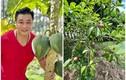 Khu vườn xanh mướt trong biệt thự 700m2 của Lý Hùng