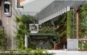 Báo Mỹ ngỡ ngàng nhà Việt sở hữu khu vườn từ tầng trệt lên mái