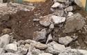 Vụ chôn thuốc trừ sâu: Kiểm tra sử dụng đất