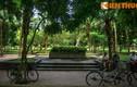 Giải mã ngôi mộ độc đáo nhất đất Nam Định