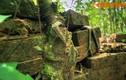 Khám phá tòa tháp bí ẩn nhất thánh địa Mỹ Sơn