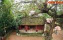 Thăm đền thờ Tô Hiến Thành nổi tiếng Sầm Sơn