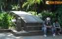 Chiêm ngưỡng cầu đá cổ 200 tuổi giữa trung tâm Hà Nội