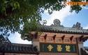 Thăm cội bồ đề đặc biệt nhất Việt Nam ở chùa Từ Đàm
