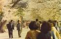 Ít ai ngờ, cuộc sống ở Seoul cuối thập niên 1970 là thế này