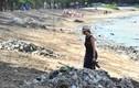 """Thiên đường du lịch Bali """"chết ngạt"""" trong biển rác"""