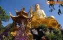 Chiêm ngưỡng Thiền viện Vạn Hạnh linh thiêng bậc nhất Việt Nam