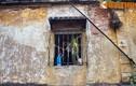 """Tiết lộ """"sốc"""" về con phố nghèo khó nhất Hà Nội xưa"""