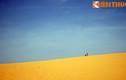 Cảnh siêu thực của sa mạc cát khổng lồ ở Bình Thuận