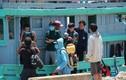 Bốn ngư dân bị đâm chìm tàu ở Hoàng Sa đã vào bờ an toàn