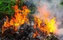 Nỗ lực dập lửa giữa trưa nắng nóng, một cụ bà tử vong thương tâm