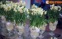 Ly kỳ sự tích về hoa thủy tiên ngày Tết Việt