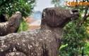 Giải mã bức tượng trâu nghìn tuổi ở chùa Phật Tích