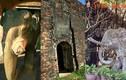 Loạt di tích nổi tiếng gắn với đàn voi chiến Việt Nam
