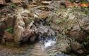 Bí ẩn của dòng suối chảy qua làng cổ Thiên Xuân