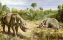 Những loài vật ấn tượng nhất kỷ nguyên hậu khủng long (1)