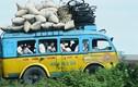 Bồi hồi nhìn lại cuộc sống ở nông thôn Việt Nam đầu thập niên 1990