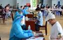 TP.HCM: Đề xuất cấp thẻ xanh cho người tiêm một mũi vắc xin