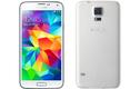 """Ngắm Samsung Galaxy S """"tiến hóa"""" chỉ trong một bức ảnh"""