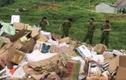 Lạng Sơn: Tiêu hủy hàng hóa nhập lậu có giá trị hàng tỷ đồng
