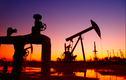 Giá xăng dầu hôm nay 7/8: Thị trường lao dốc, chưa thể vượt lên