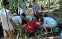 Yên Bái: Sạt lở đất, 1 người tử vong, 3 người bị thương