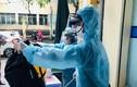 Hạ Lôi có thêm 2 trường hợp mắc COVID-19, Việt Nam 262 ca bệnh