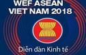 Hôm nay, khai mạc Hội nghị Diễn đàn Kinh tế Thế giới về ASEAN