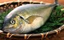 Chọn cá an toàn khi nguồn nước nhiễm thủy ngân
